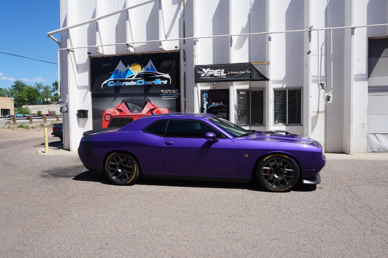 Challenger plat package with bumper